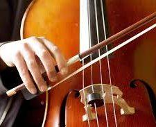 violonceles